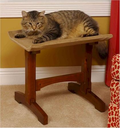 Superieur Single Cat Seat