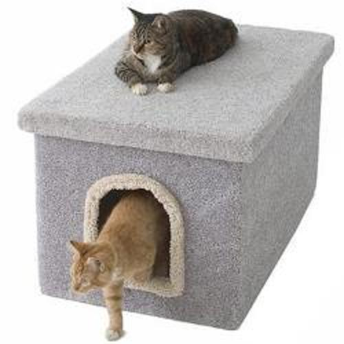 Big Litter Box For Cats