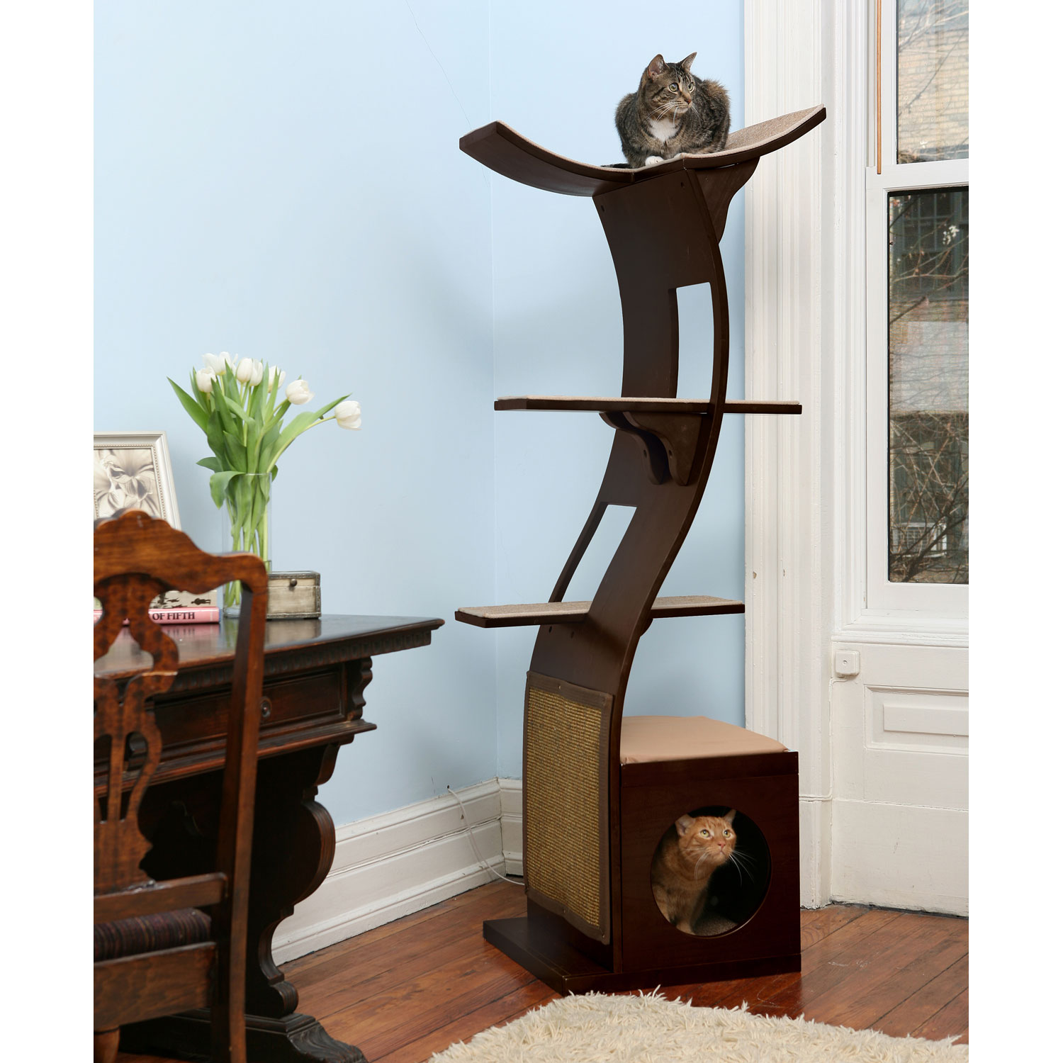 Premium Cat Furniture Cat Condos Cat Trees Towers Gyms Cat Beds Cat Houses